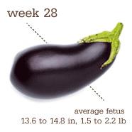 week28
